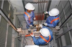Cung cấp thang máy Đà Nẵng